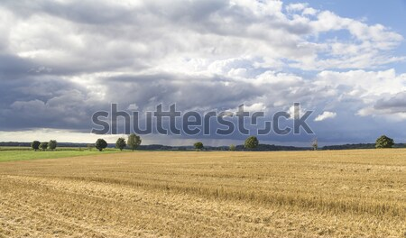 rural landscape with clouds Stock photo © prill