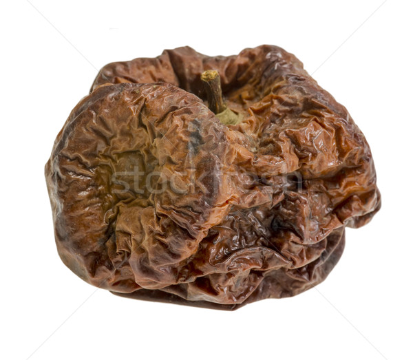 dry rotten apple Stock photo © prill