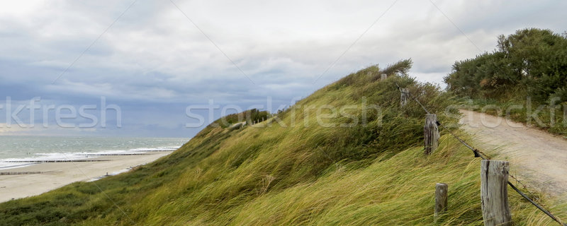 coastal scenery in the Netherlands Stock photo © prill