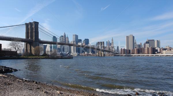 New York skyline and Brooklyn Bridge Stock photo © prill