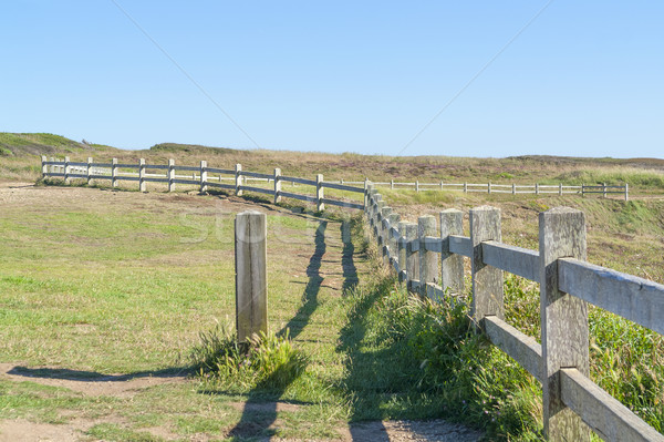 wooden fence in Brittany Stock photo © prill