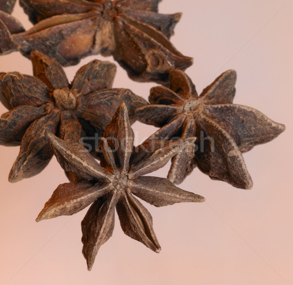 spicy star-anise Stock photo © prill