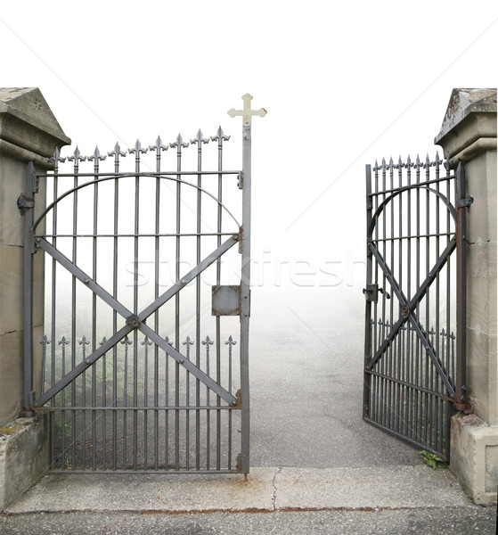 open wrought-iron gate Stock photo © prill