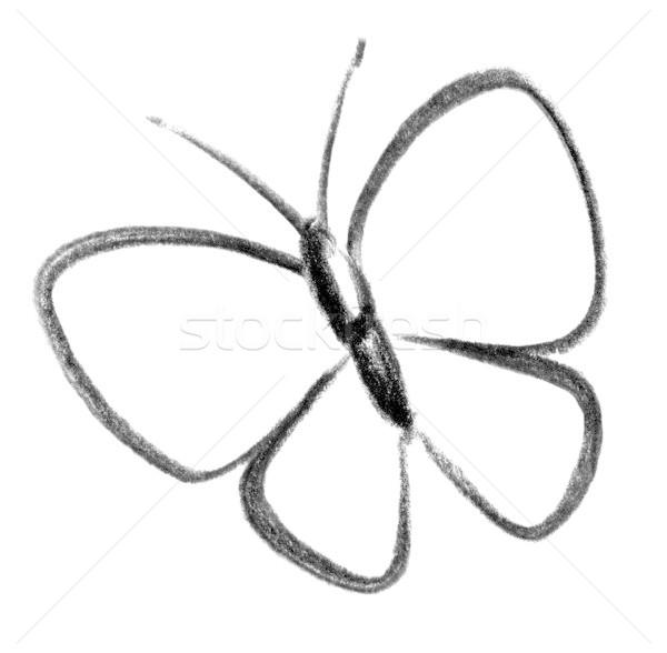 Kelebek Ikon Ornek Boya Imzalamak Iletisim Stok