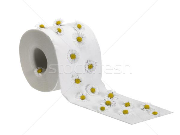 Carta igienica rotolare decorato Daisy fiori studio Foto d'archivio © prill