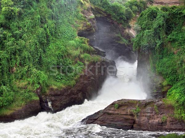 Stock fotó: Uganda · részlet · zöld · sziklaformáció · Afrika · fa