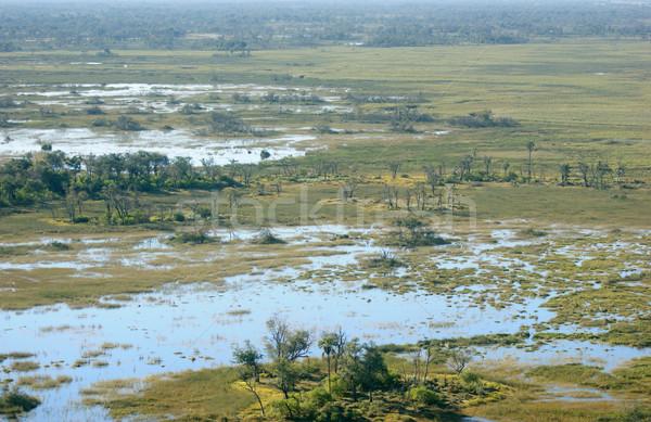 Delta légifelvétel Botswana Afrika fa természet Stock fotó © prill