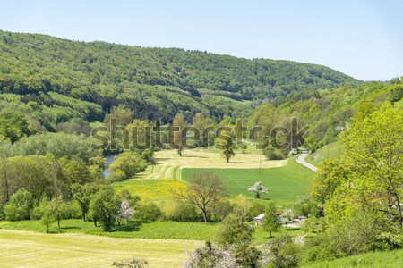 Stock photo: rural springtime scenery