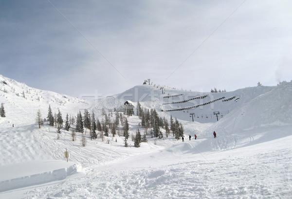 Сток-фото: зима · декораций · Австрия · Солнечный · спорт · снега