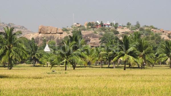 scenery around Hampi Stock photo © prill