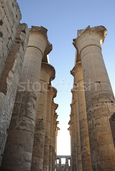 columns at Luxor Temple in Egypt Stock photo © prill
