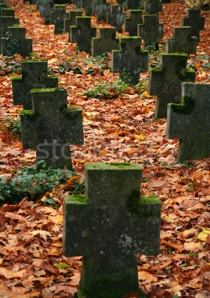 autumn graveyard Stock photo © prill