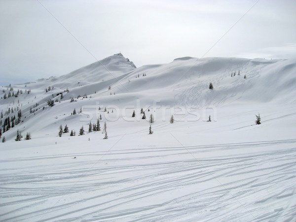 Сток-фото: зима · декораций · Австрия · снега · спорт
