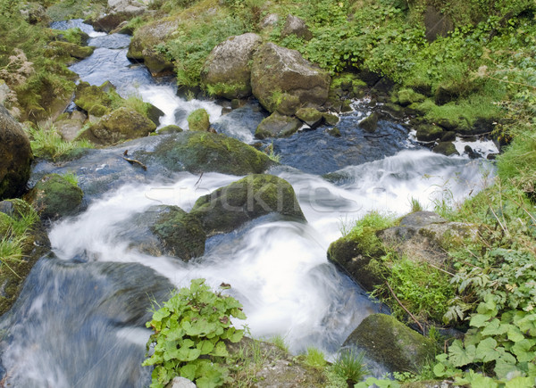 detail of the Triberg Waterfalls Stock photo © prill