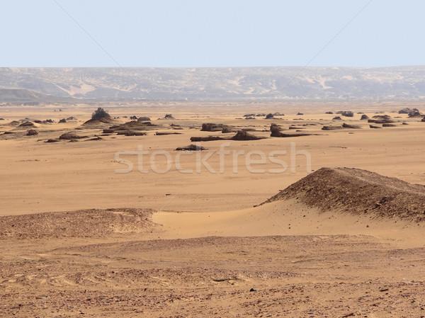 周りに 砂漠 風景 歴史的 オアシス エジプト ストックフォト © prill