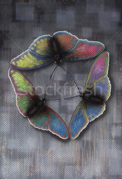 Butterflies Flight Stock photo © prill