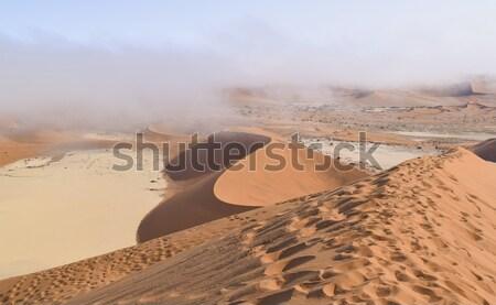 пустыне Намибия декораций вокруг Африка путешествия Сток-фото © prill