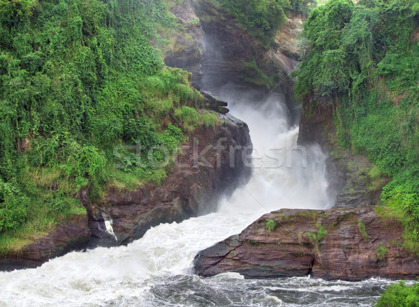 Murchison Falls whitewater scenery Stock photo © prill