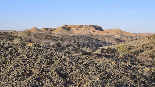 landscape in Namibia Stock photo © prill