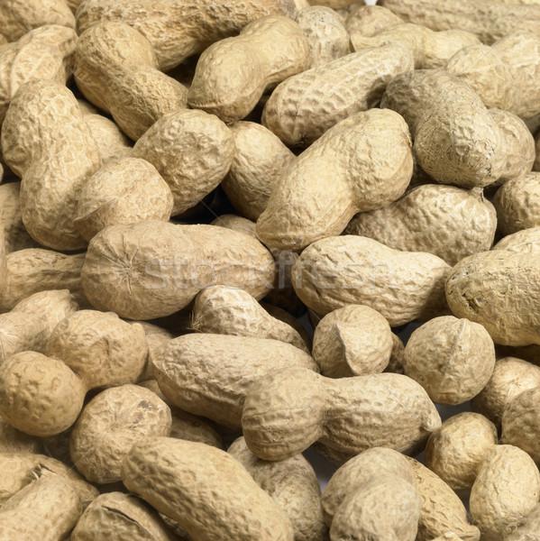 unpeeled peanuts Stock photo © prill