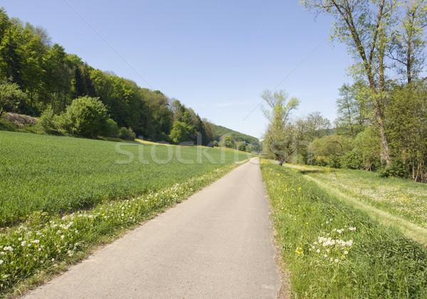 Idyllisch voorjaar landschap zonnige zuidelijk Duitsland Stockfoto © prill
