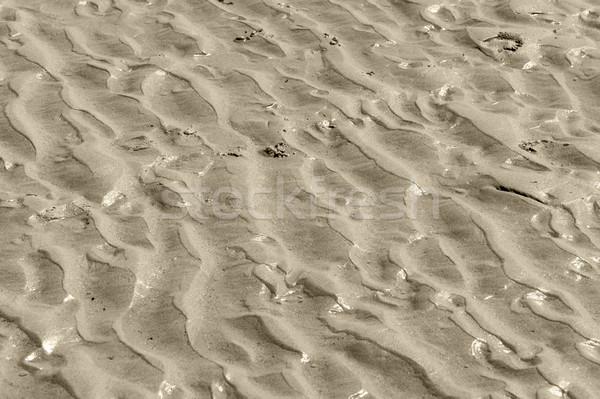 wet beach scenery Stock photo © prill