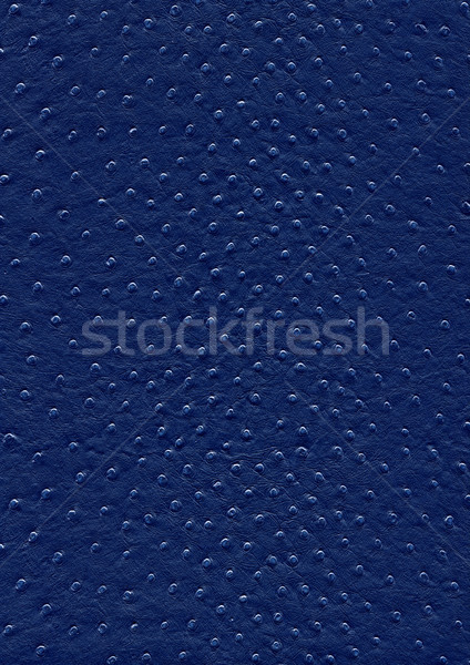 ostrich leather surface Stock photo © prill