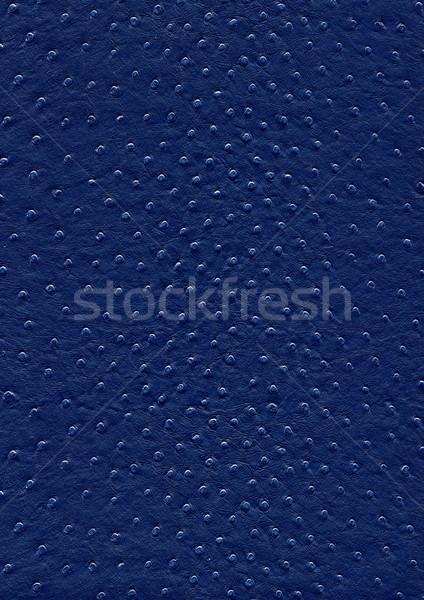 Struzzo pelle superficie full frame abstract buio Foto d'archivio © prill