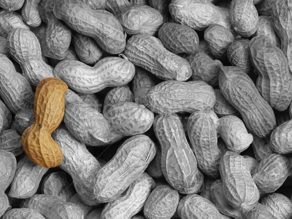 Cacahuètes arachide gris alimentaire fruits fond Photo stock © prill