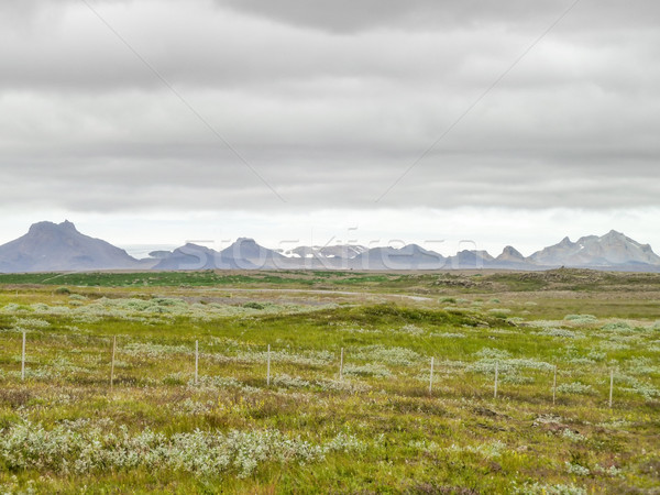 landscape in Iceland Stock photo © prill