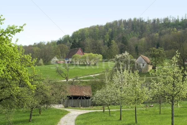 Nostálgico tempo Alemanha natureza arquitetura Foto stock © prill