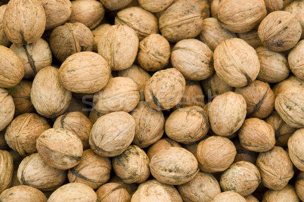 unpeeled walnut background Stock photo © prill
