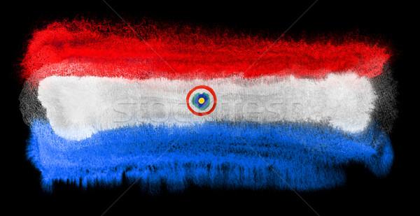 Paraguay flag illustration Stock photo © prill