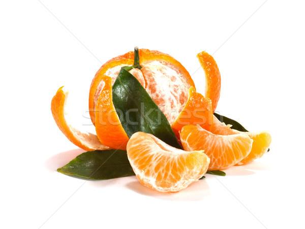 Rijp mandarijn- bladeren witte vruchten Stockfoto © Pruser