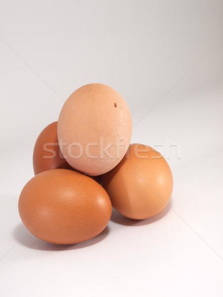 Marrón huevos blanco macro vista huevo Foto stock © Pruser