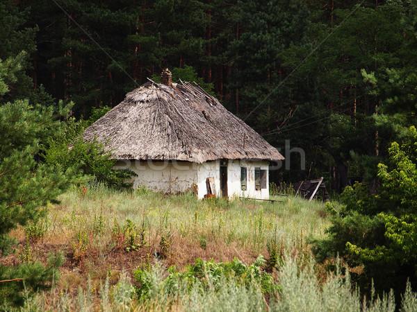 старые дома заброшенный крыши лесу Сток-фото © Pruser