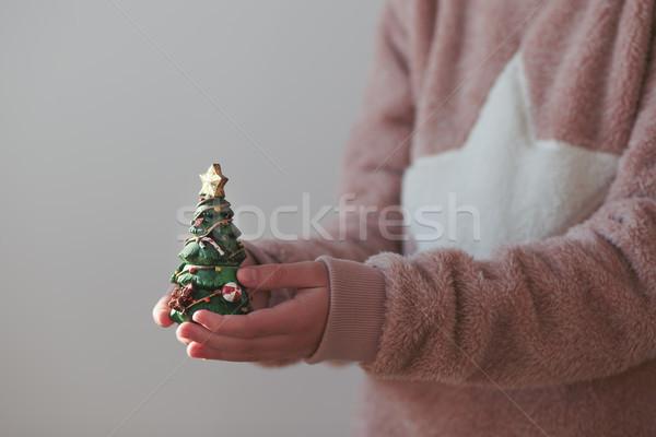 Lány tart karácsonyfa szobrocska visel meleg Stock fotó © przemekklos