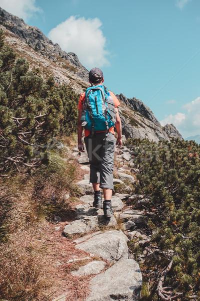 Boy hiking alone in the mountains Stock photo © przemekklos