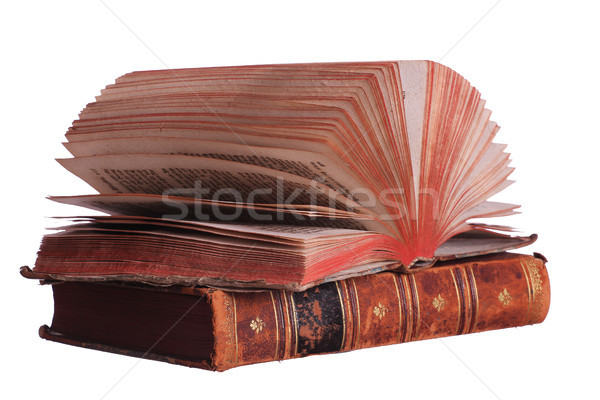 stack of books with fanned pages Stock photo © pterwort