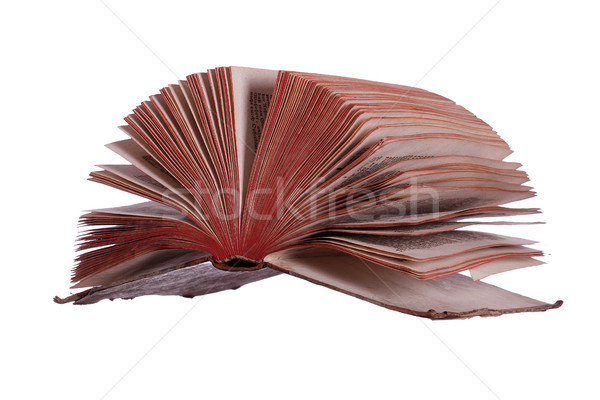 historic book with fanned pages on white Stock photo © pterwort
