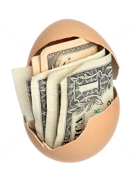 money in brown eggshell Stock photo © pterwort