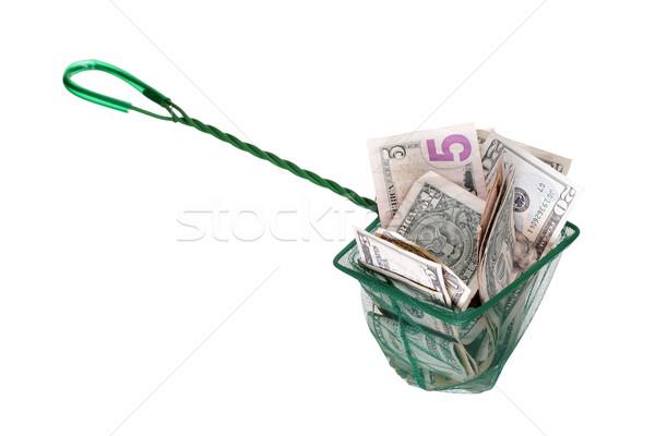 Dollár net üzlet hal bank siker Stock fotó © pterwort