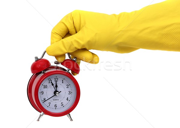 time for cleaning Stock photo © pterwort