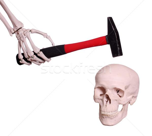 Esqueleto mão martelo crânio cara trabalhar Foto stock © pterwort