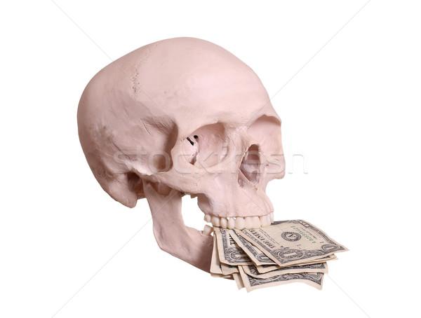 頭蓋 ドル 歯 ビジネス お金 顔 ストックフォト © pterwort