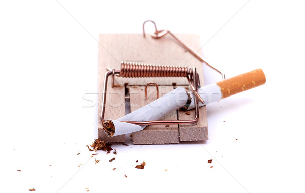 smashed cigarette on mousetrap Stock photo © pterwort