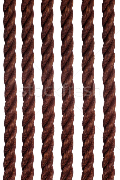 old ropes Stock photo © pterwort