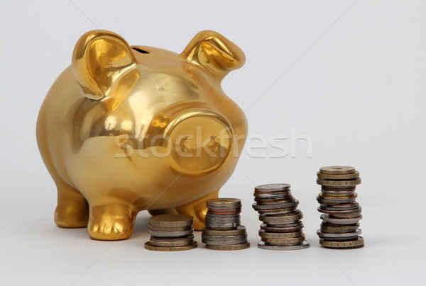 piggy bank and stacks of coins Stock photo © pterwort