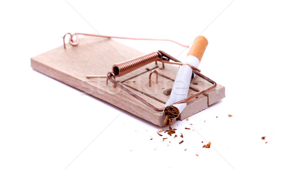mousetrap with smashed cigarette Stock photo © pterwort