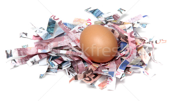 shredded european currency with egg Stock photo © pterwort